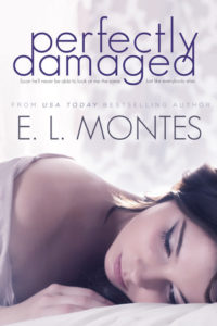 Perfectly Damaged by E L Montes