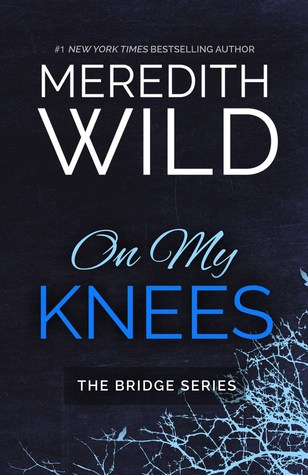Pre-Order: The Bridge Series by Meredith Wild