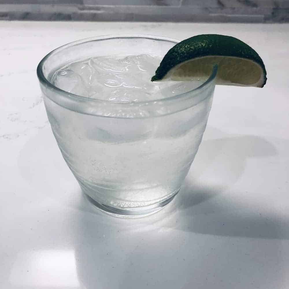 Lucy Score-A Day in the Life-Gin and Tonic