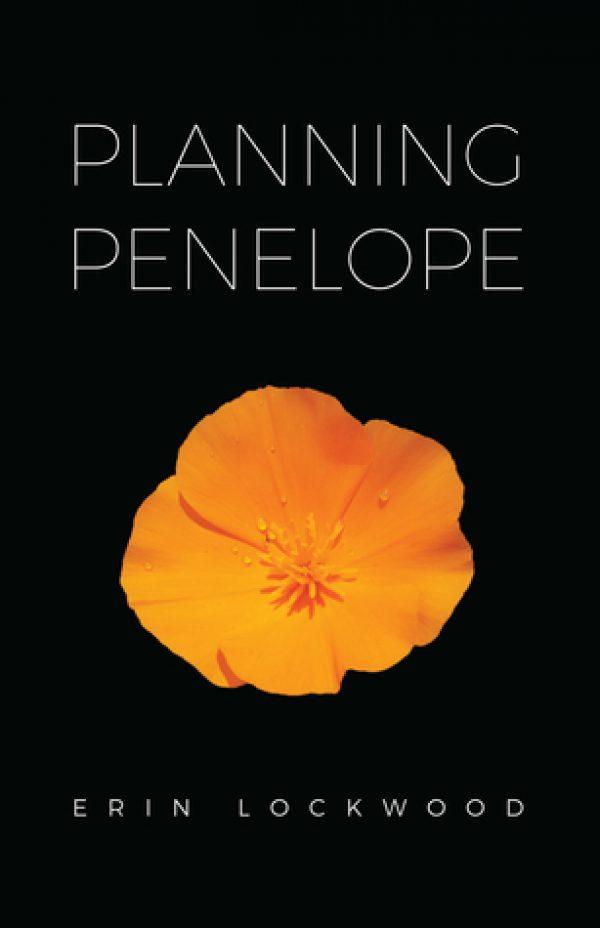 Planning Penelope by Erin Lockwood | contemporary romantic suspense